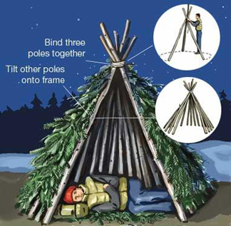 Bamboo Hut Illustration