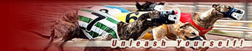 DNC greyhound racing logo